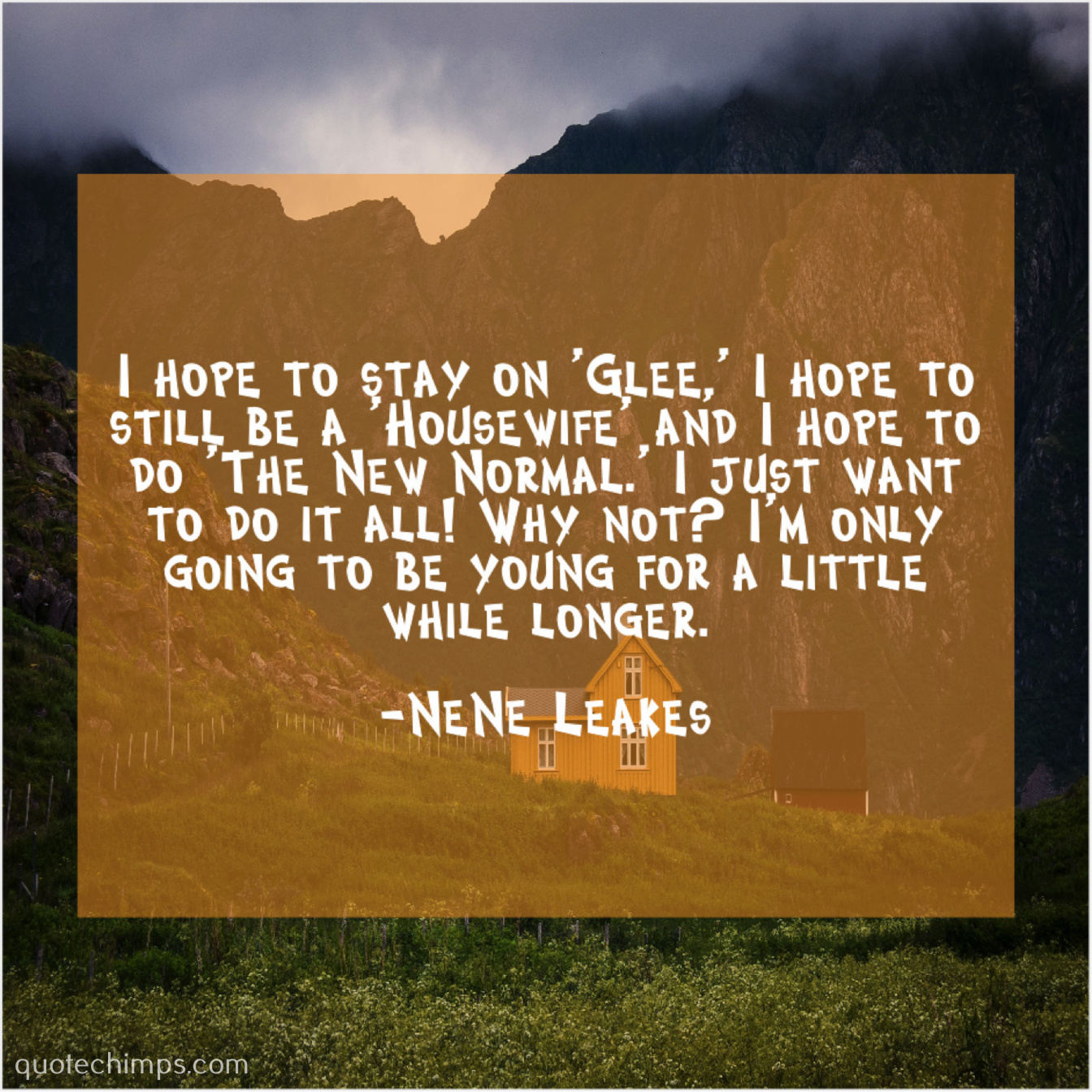 Nene Leakes I Hope To Stay On Quote Chimps