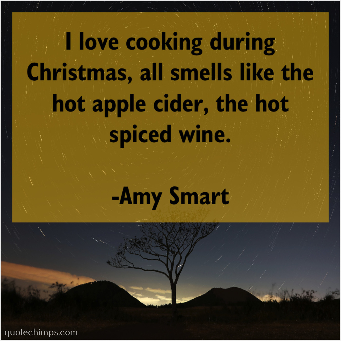Amy Smart – I love cooking during Christmas… |