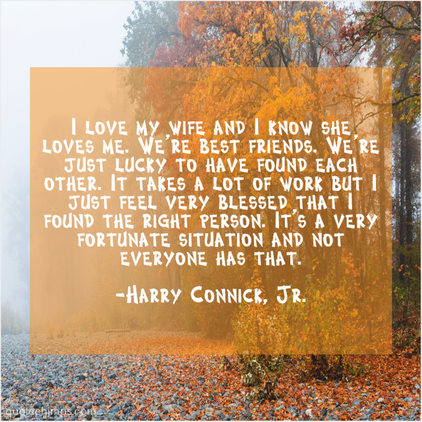 Harry Connick Jr I Love My Wife And Quote Chimps