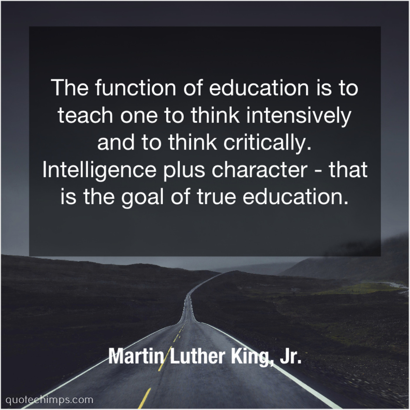Martin Luther King Jr The Function Of Education Is