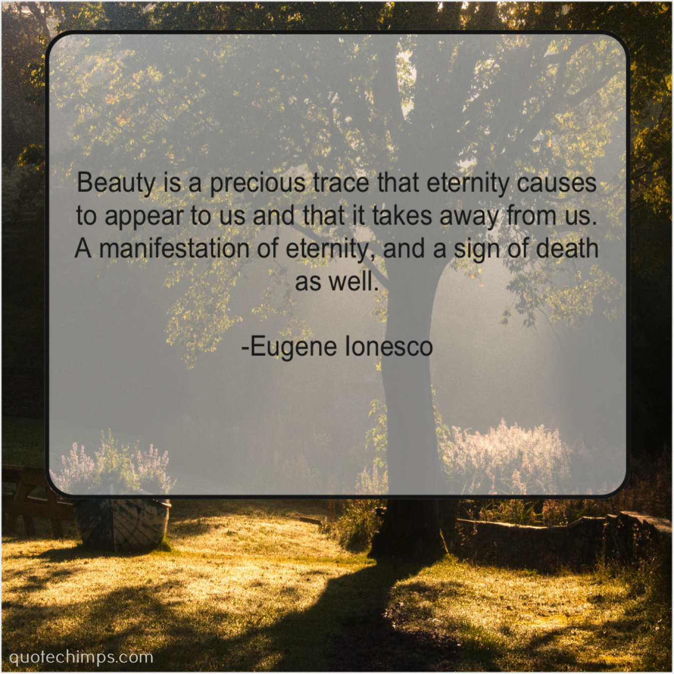 Eugene Ionesco – Beauty is a precious trace… |
