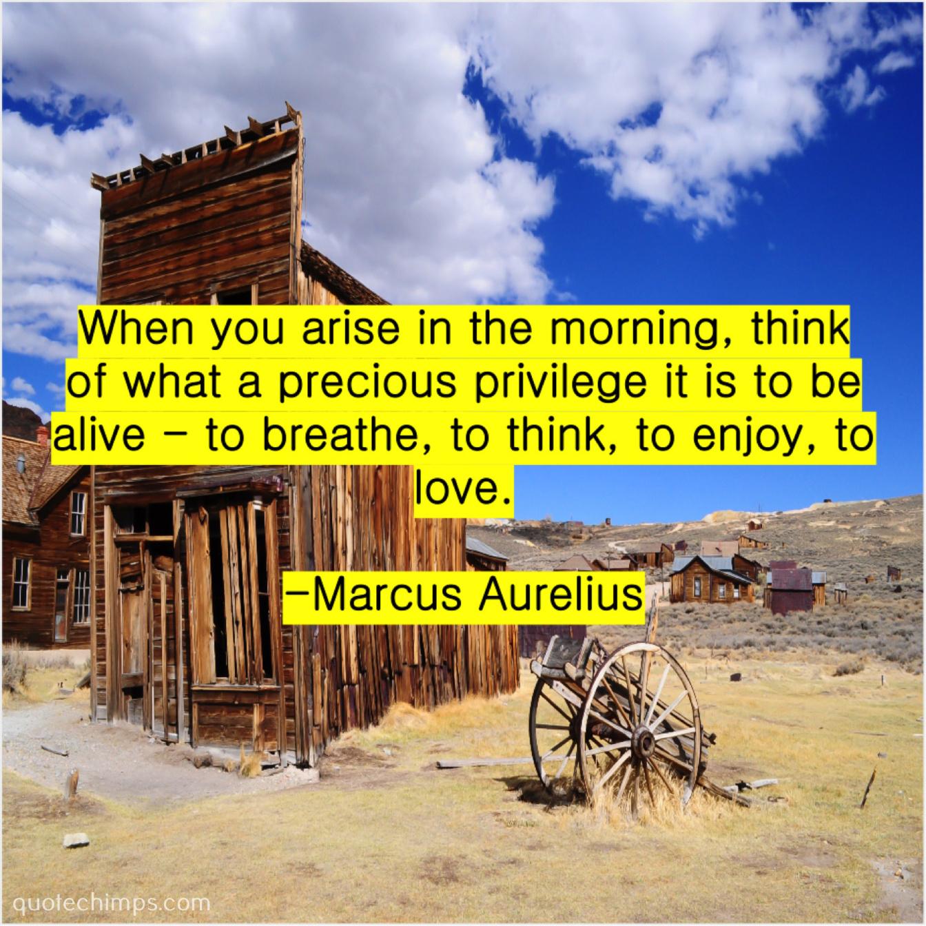 Marcus Aurelius When You Arise In The